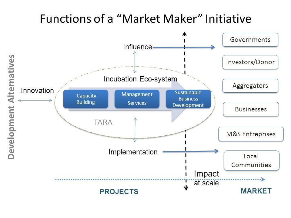 Functions of a Market Maker Initiative Capacity Building Management Services Sustainable Business Development M&S Entreprises Local Communities Incuba