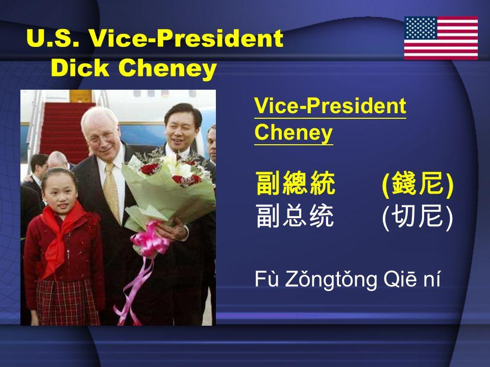 U.S. Vice-President Dick Cheney Vice-President Cheney ( ) Fù Zǒngtǒng Qiē ní