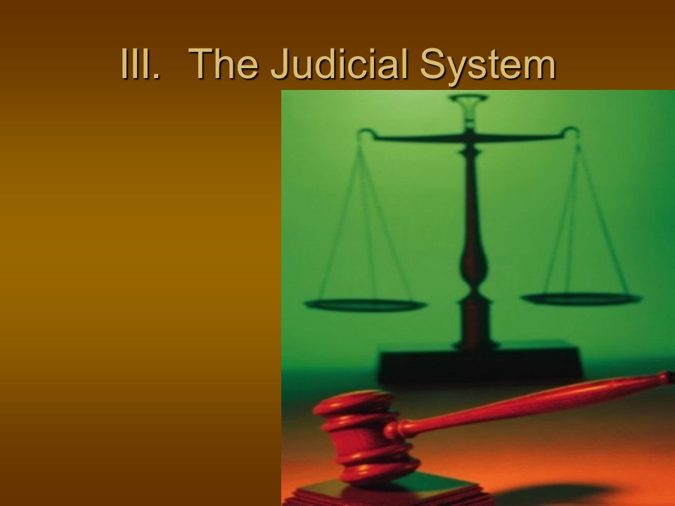 III. The Judicial System