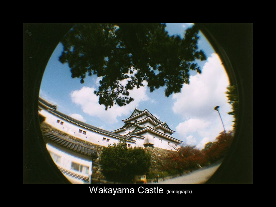Wakayama Castle (lomograph)