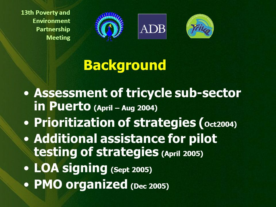 13th Poverty and Environment Partnership Meeting Air and Noise Pollution Reduction Strategies for Tricycle Sub-Sector in Puerto Princesa City CLEAN AI