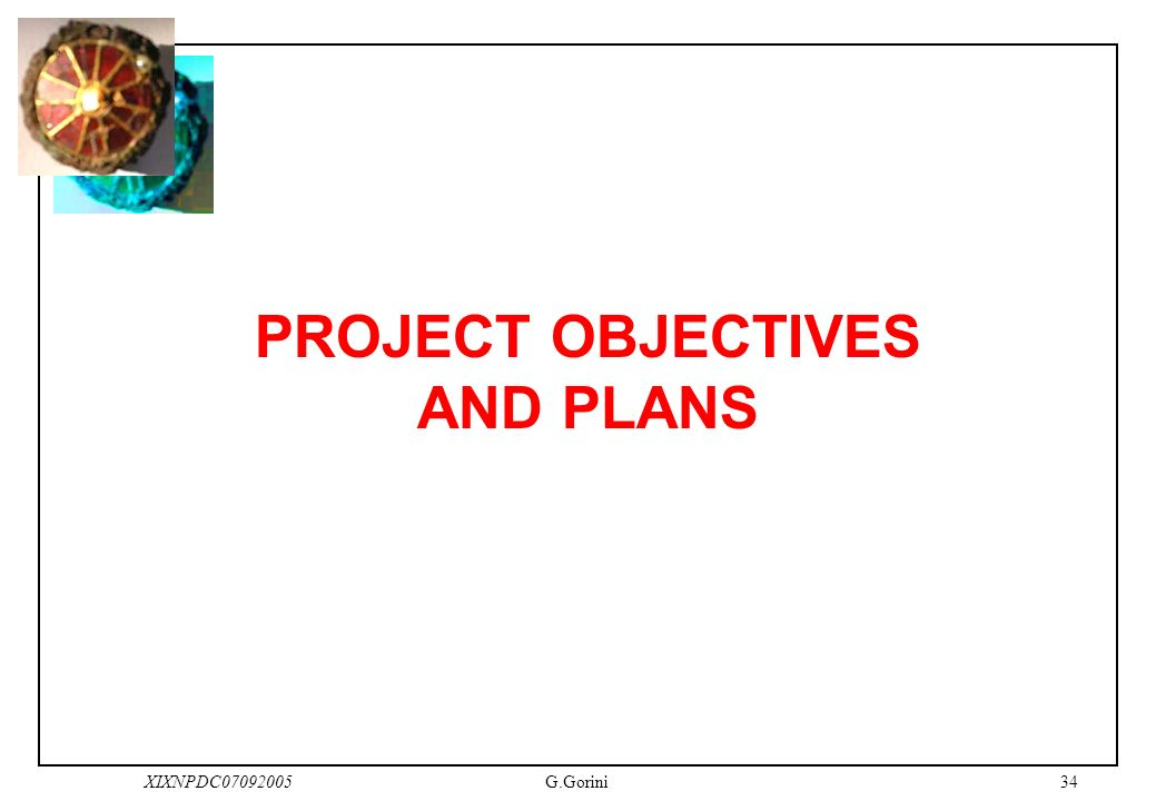 34XIXNPDC07092005G.Gorini PROJECT OBJECTIVES AND PLANS