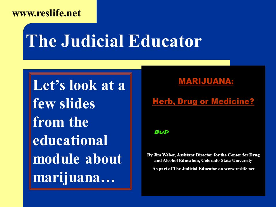 www.reslife.net The Judicial Educator Lets look at a few slides from the educational module about marijuana… MARIJUANA: Herb, Drug or Medicine? By Jim