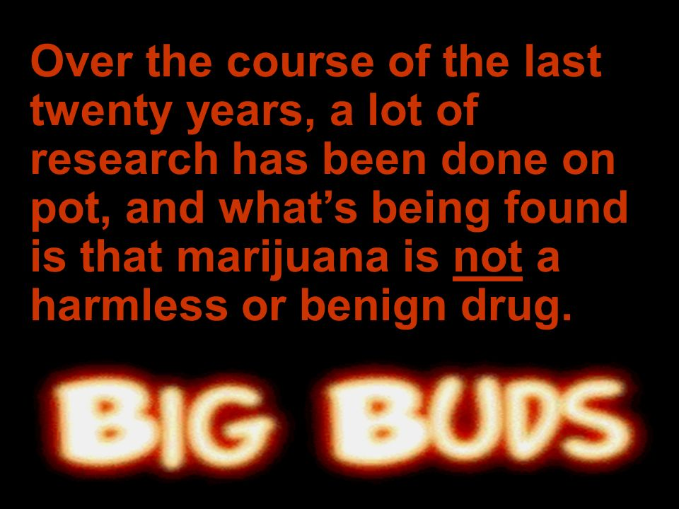 www.reslife.net Over the course of the last twenty years, a lot of research has been done on pot, and whats being found is that marijuana is not a har