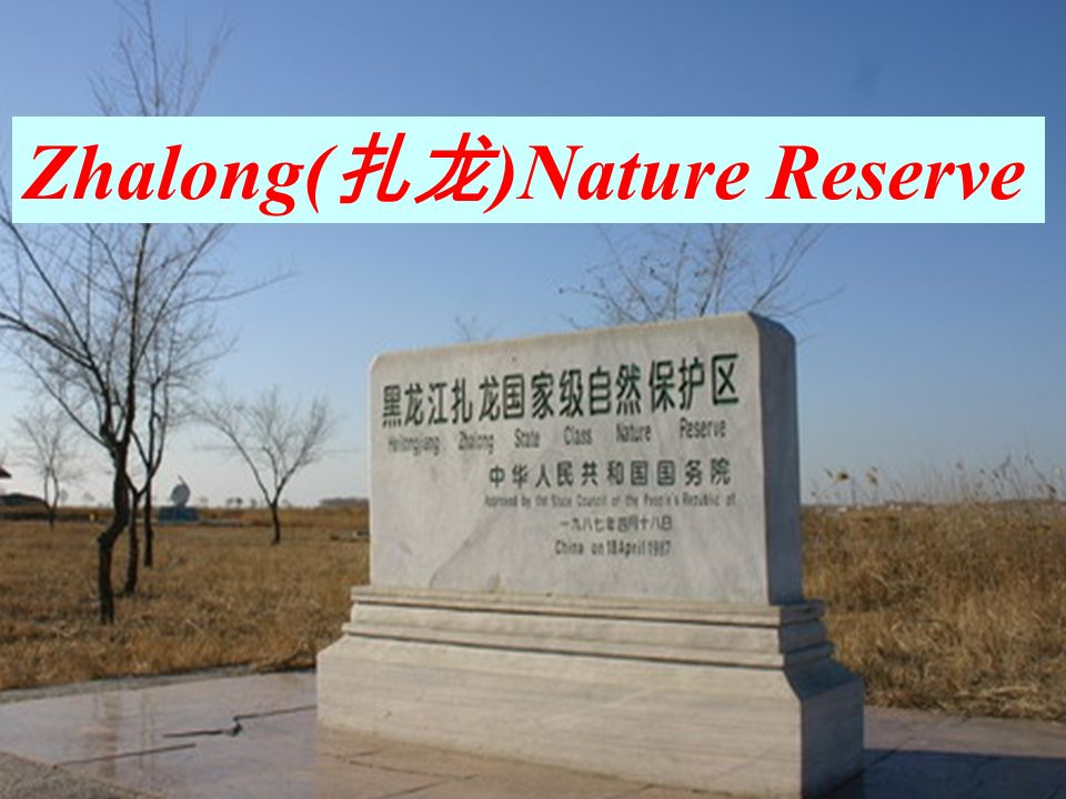 Zhalong( )Nature Reserve