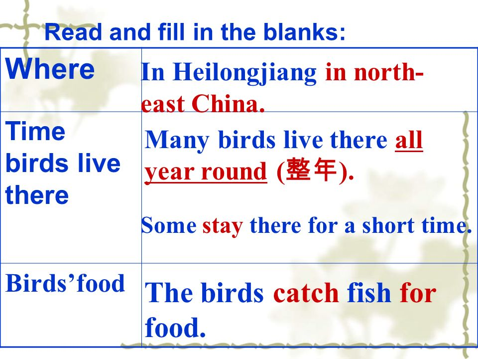 Where Time birds live there Birdsfood Read and fill in the blanks: In Heilongjiang in north- east China.