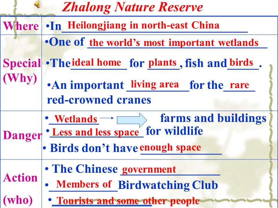 Zhalong Nature Reserve Where In______________________________ Birds dont have _____________ Special (Why) One of _____________________________ The_________ for _____, fish and_____.