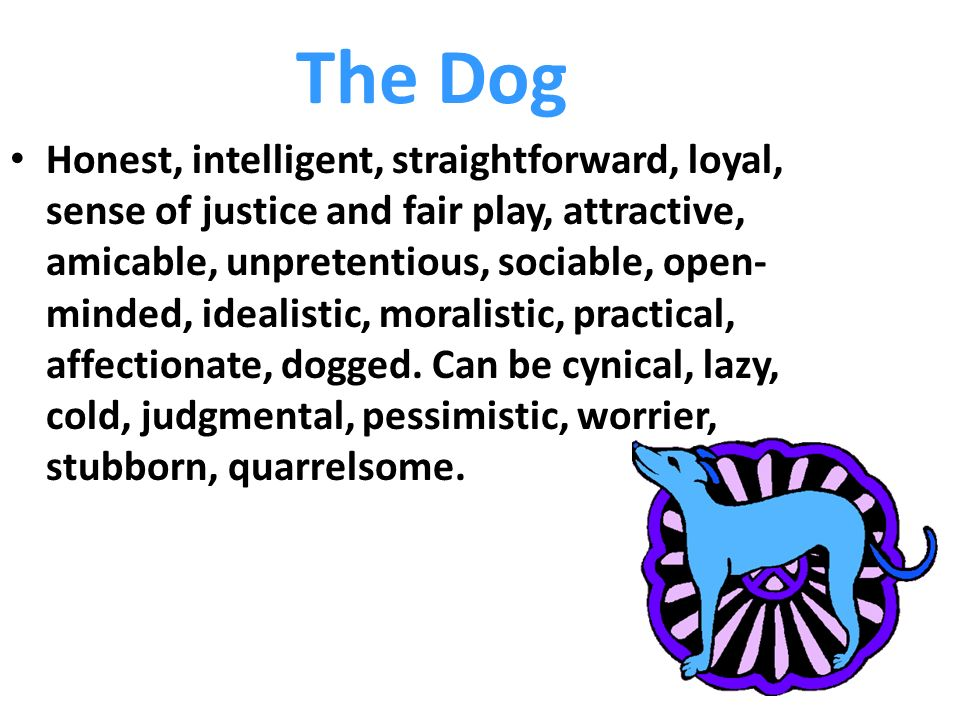 The Dog Honest, intelligent, straightforward, loyal, sense of justice and fair play, attractive, amicable, unpretentious, sociable, open- minded, idealistic, moralistic, practical, affectionate, dogged.