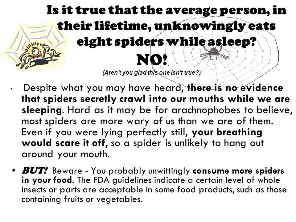 Is it true that the average person, in their lifetime, unknowingly eats eight spiders while asleep.