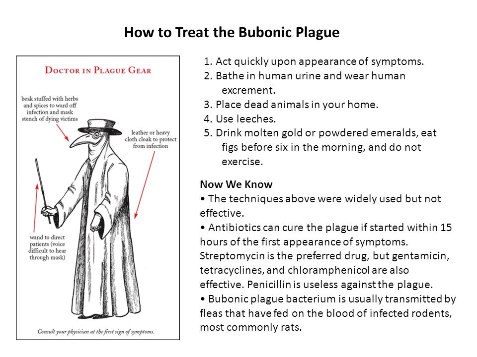 How to Treat the Bubonic Plague 1. Act quickly upon appearance of symptoms. 2. Bathe in human urine and wear human excrement. 3. Place dead animals in