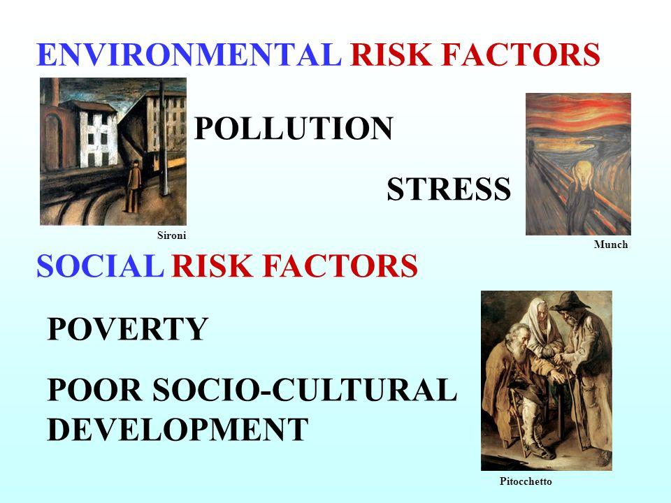 ENVIRONMENTAL RISK FACTORS POLLUTION STRESS SOCIAL RISK FACTORS POVERTY POOR SOCIO-CULTURAL DEVELOPMENT Sironi Munch Pitocchetto