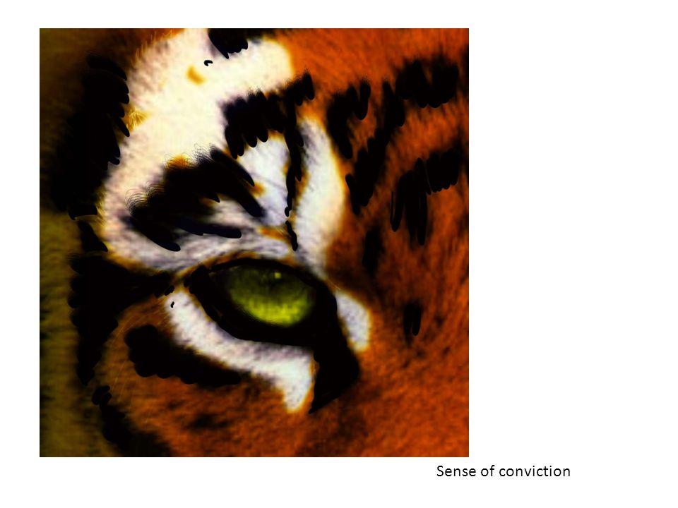 Sense of conviction