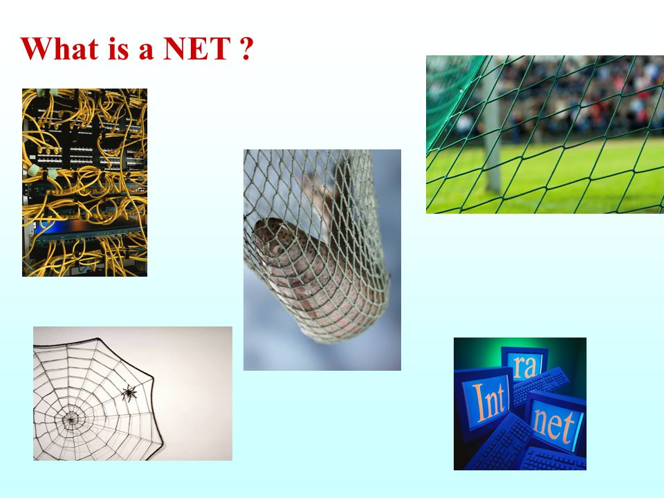 What is a NET ?