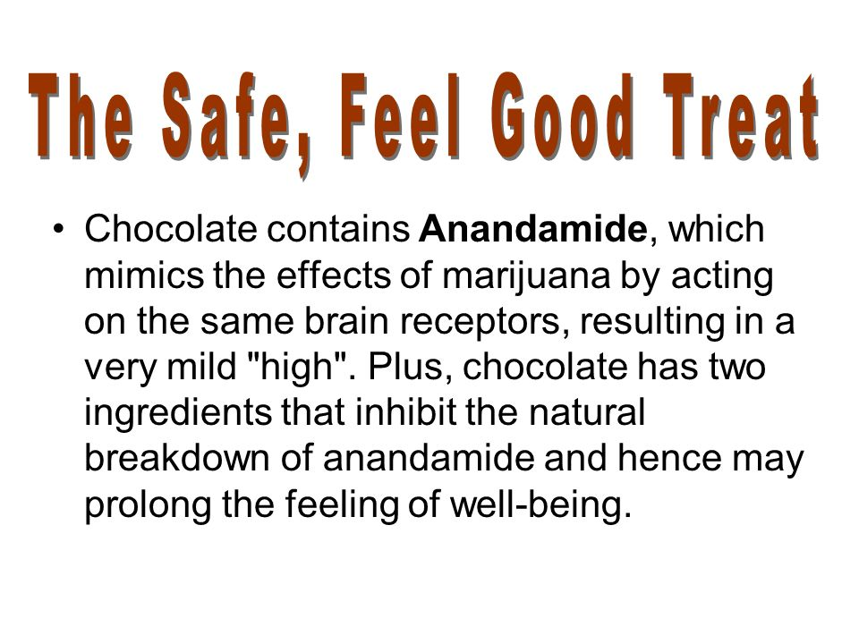Chocolate contains Anandamide, which mimics the effects of marijuana by acting on the same brain receptors, resulting in a very mild high .
