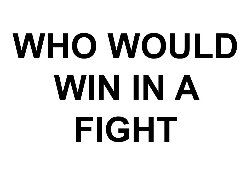 WHO WOULD WIN IN A FIGHT