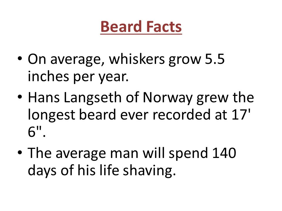 Beard Facts On average, whiskers grow 5.5 inches per year. Hans Langseth of Norway grew the longest beard ever recorded at 17' 6
