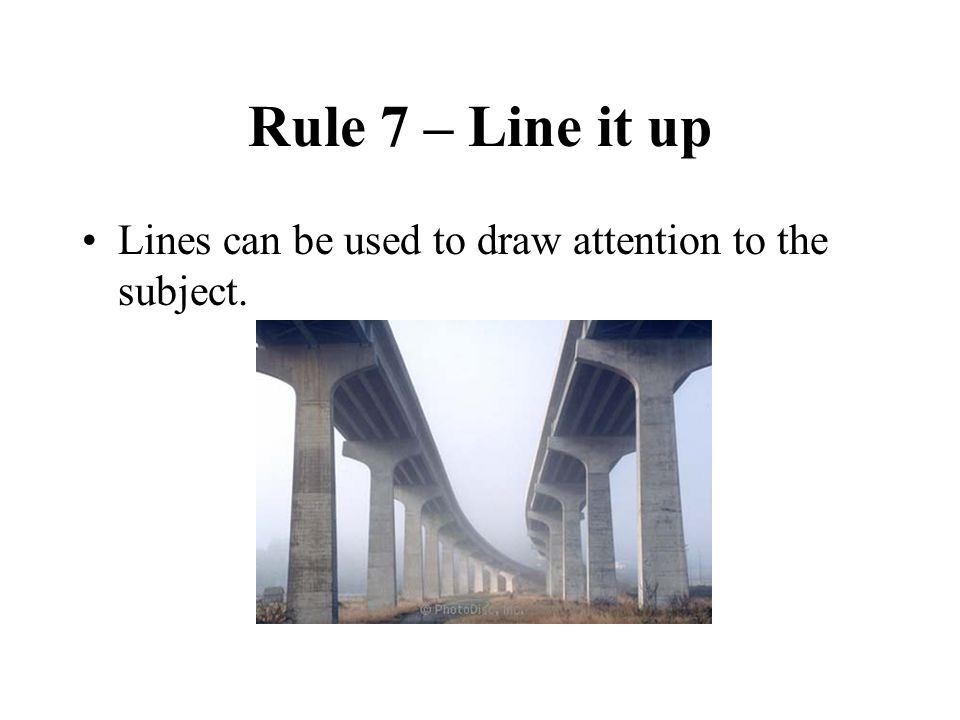 Rule 7 – Line it up Lines can be used to draw attention to the subject.