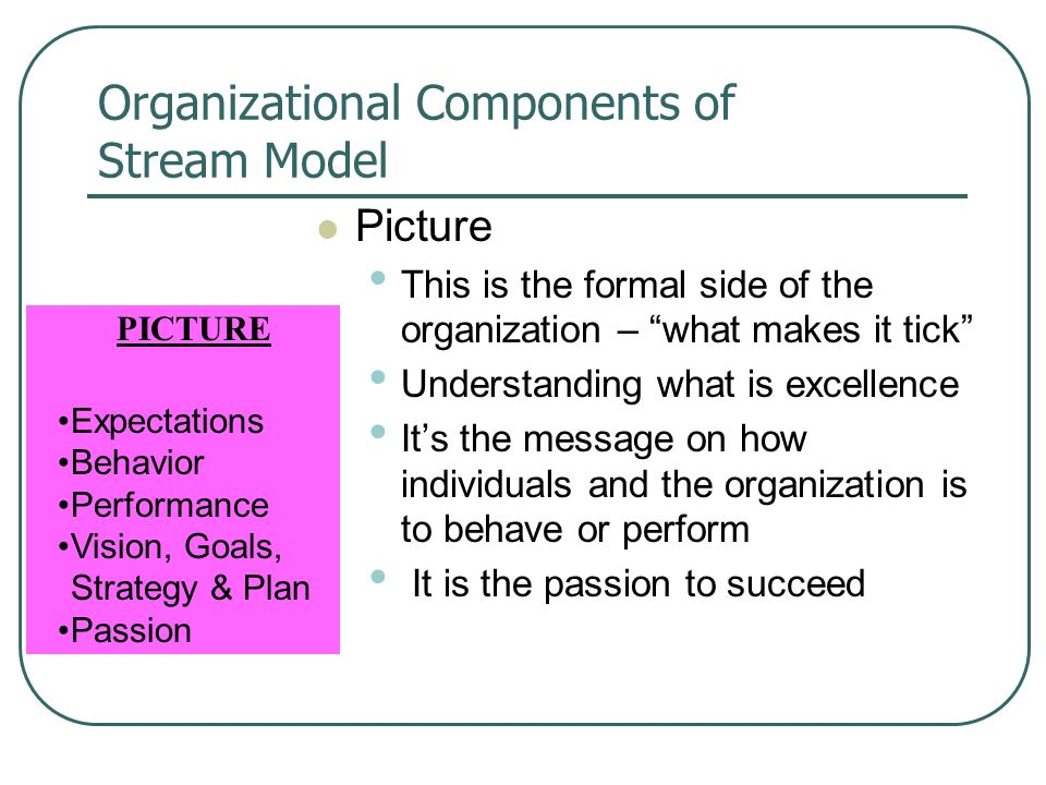 Organizational Components of Stream Model Picture This is the formal side of the organization – what makes it tick Understanding what is excellence Its the message on how individuals and the organization is to behave or perform It is the passion to succeed PICTURE Expectations Behavior Performance Vision, Goals, Strategy & Plan Passion