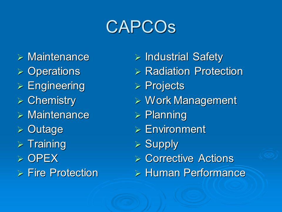 CAPCOs Maintenance Maintenance Operations Operations Engineering Engineering Chemistry Chemistry Maintenance Maintenance Outage Outage Training Traini