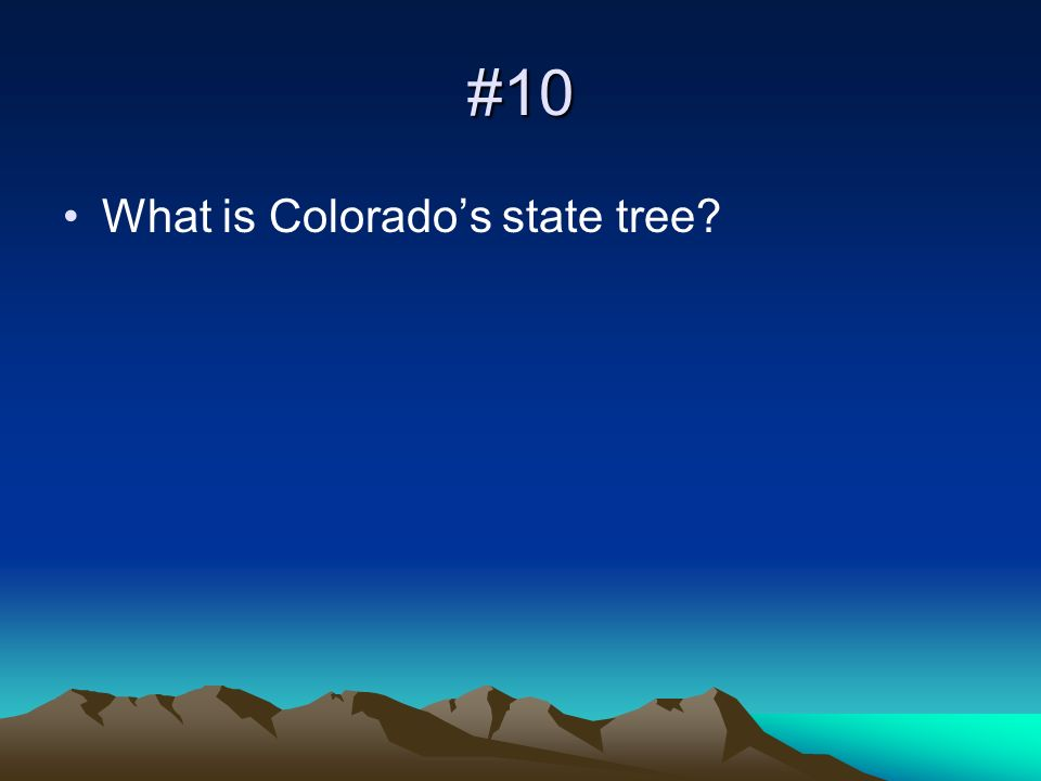 #10 What is Colorados state tree?