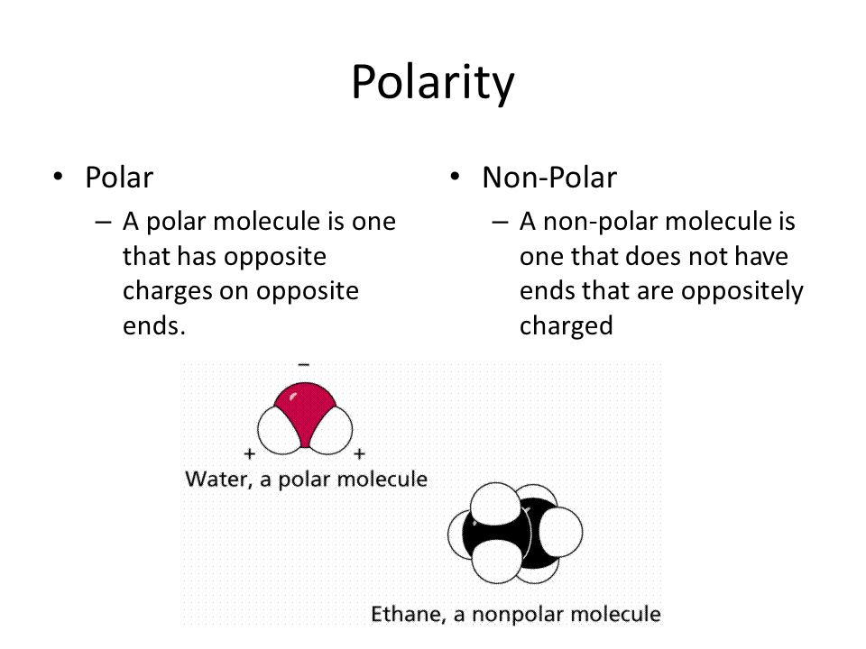 Polarity Polar – A polar molecule is one that has opposite charges on opposite ends.