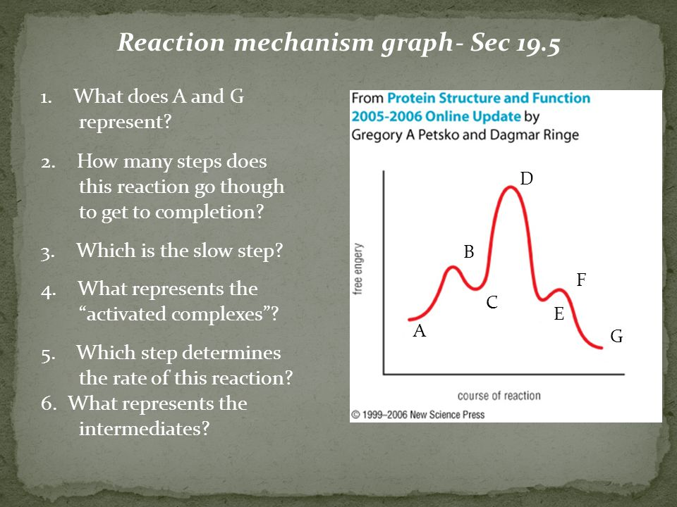 Reaction mechanism graph- Sec What does A and G represent.