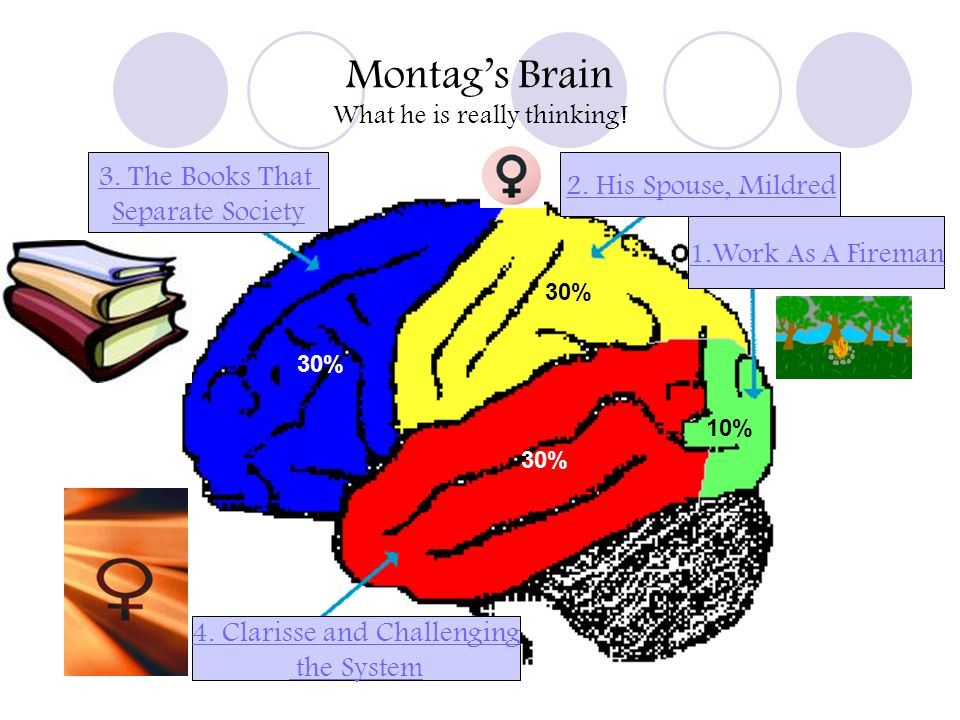 Montags Brain What he is really thinking! 1.Work As A Fireman 2. His Spouse, Mildred 4. Clarisse and Challenging the System 3. The Books That Separate