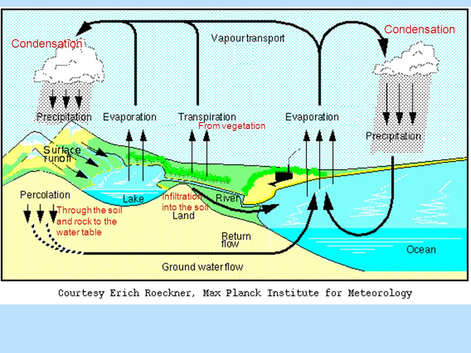 Infiltration into the soil Condensation From vegetation Through the soil and rock to the water table