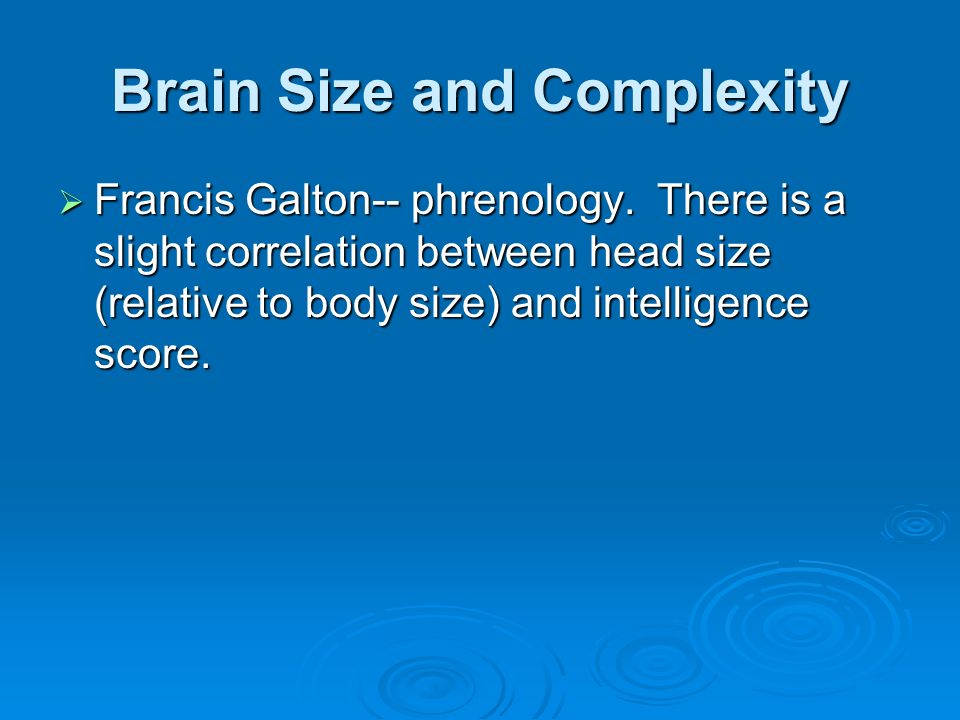 Brain Size and Complexity Francis Galton-- phrenology. There is a slight correlation between head size (relative to body size) and intelligence score.