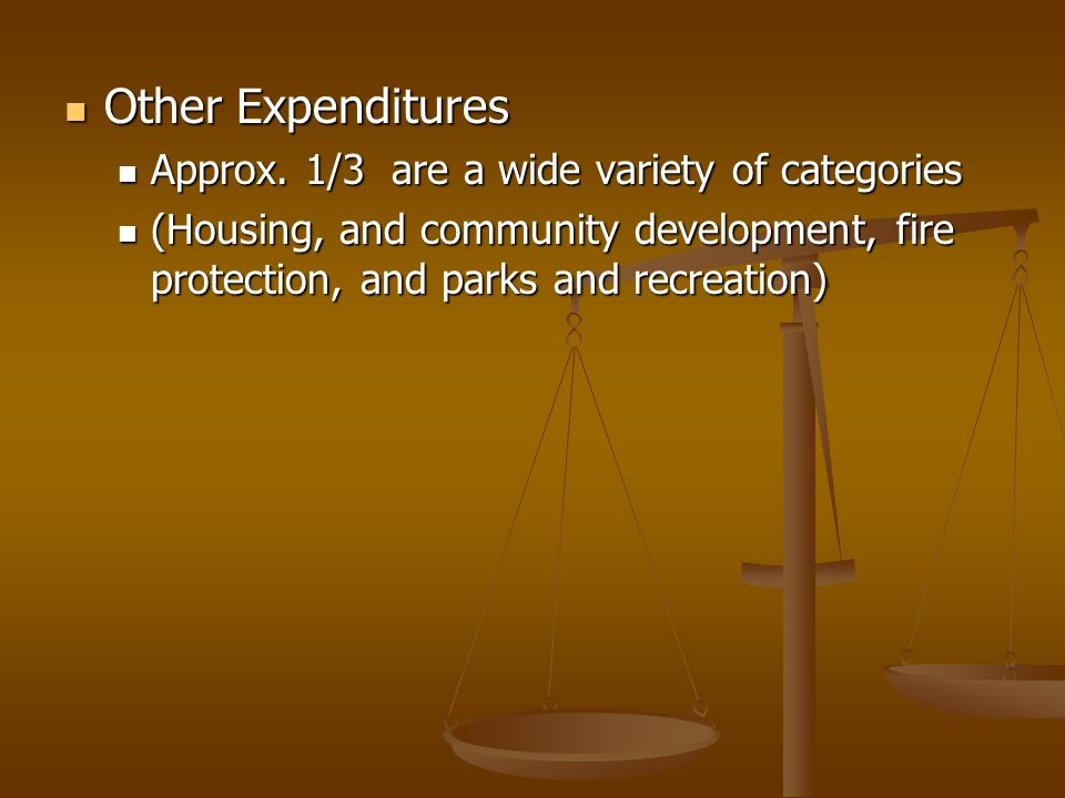 Other Expenditures Other Expenditures Approx. 1/3 are a wide variety of categories Approx.