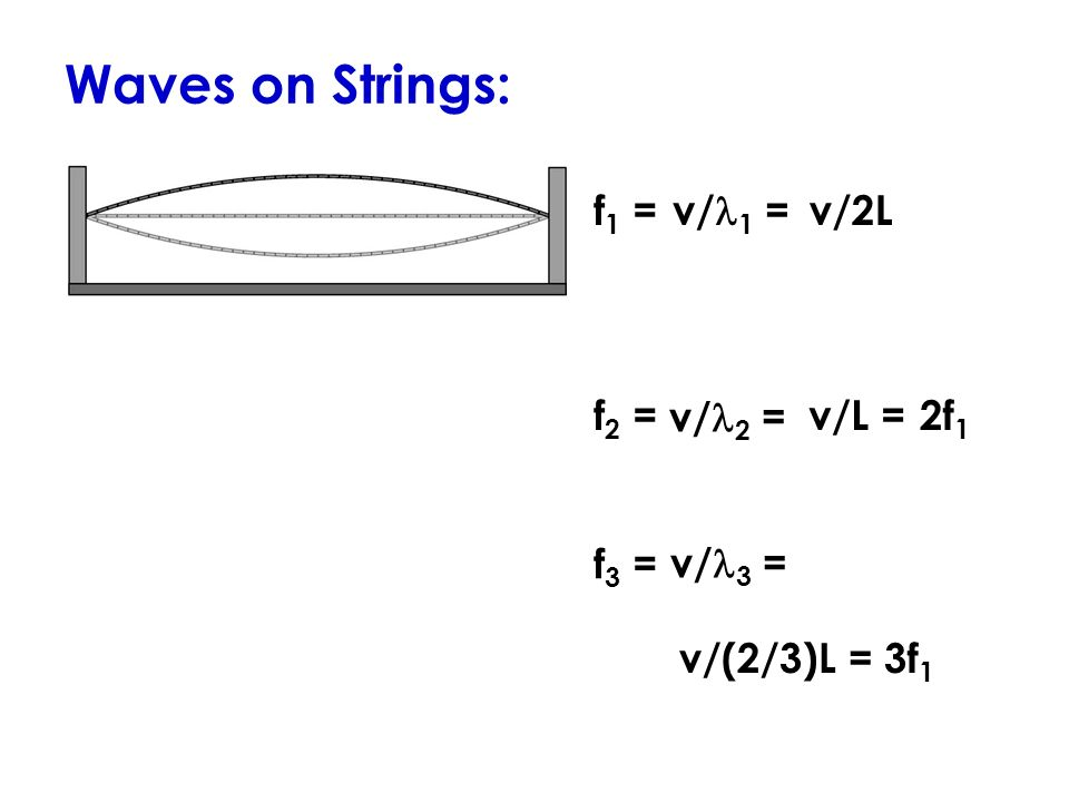 Waves on Strings: f 1 = v/ 1 = v/2L f 2 =v/L =2f 1 f 3 = v/(2/3)L =3f 1 v/ 2 = v/ 3 =