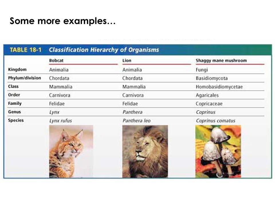 C.Binomial Nomenclature The scientifc name of an organism, consists of two parts…genus & species.
