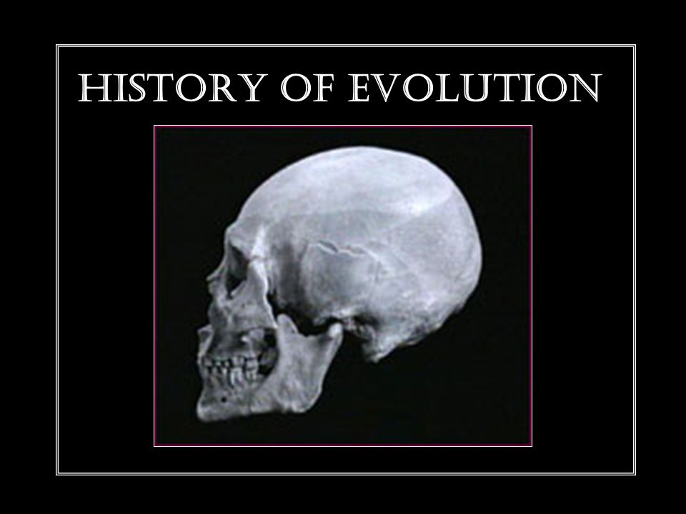 HISTORY OF EVOLUTION