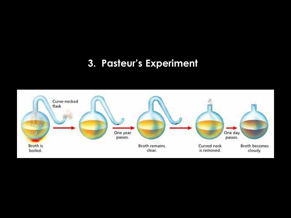 3. Pasteurs Experiment