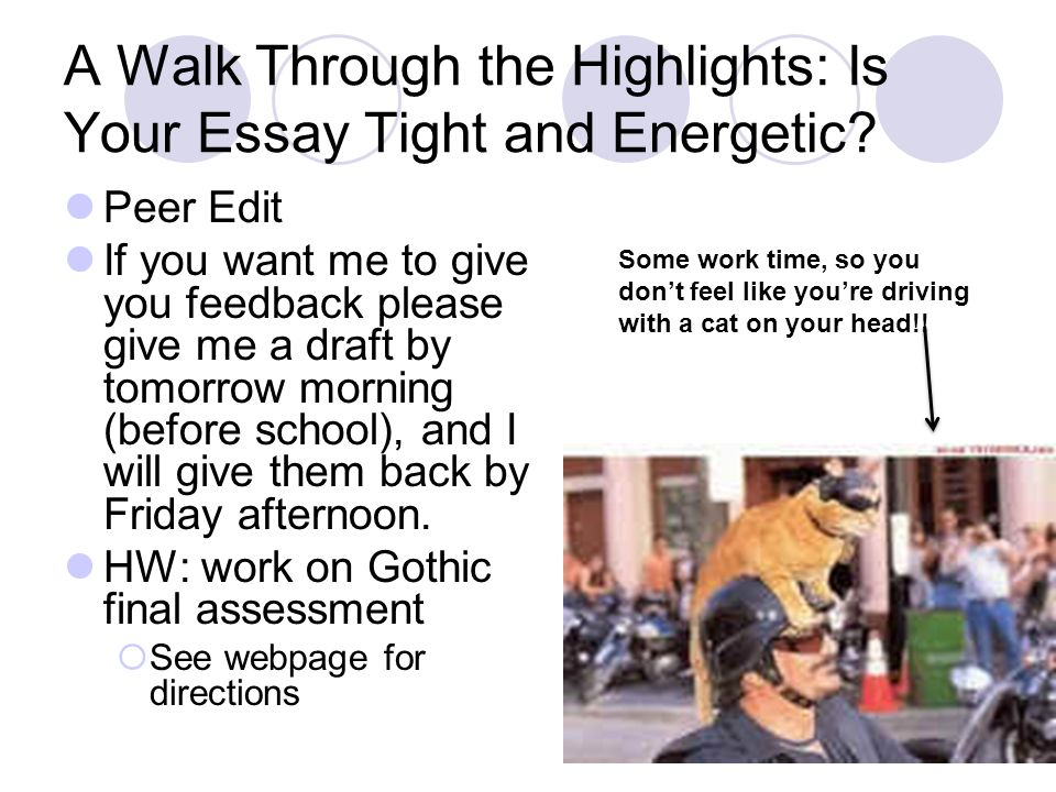 A Walk Through the Highlights: Is Your Essay Tight and Energetic.