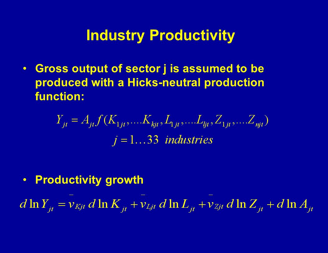Industry Productivity Gross output of sector j is assumed to be produced with a Hicks-neutral production function: Productivity growth
