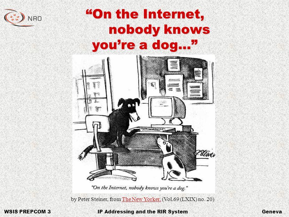 WSIS PREPCOM 3GenevaIP Addressing and the RIR System 216.239.39.99 66.187.232.50 66.135.208.101 209.217.36.32 202.12.29.20 199.166.24.5 66.135.208.88 198.41.3.45 4.17.168.6 www.google.com www.redhat.com www.ebay.com www.dogs.biz www.apnic.net www.gnso.org www.ebay.com www.doggie.com www.ietf.org On the Internet… You are nothing but an IP Address.