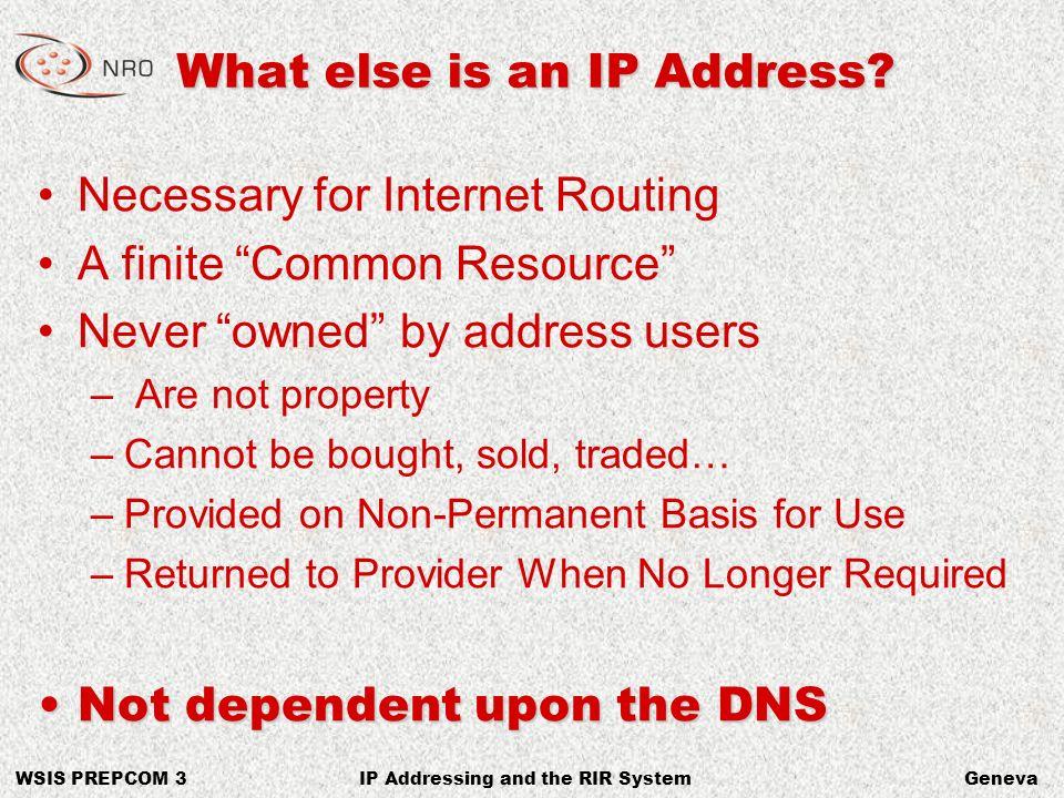 WSIS PREPCOM 3GenevaIP Addressing and the RIR System Links http://www.afrinic.nethttp://www.apnic.net http://www.arin.net http://www.lacnic.nethttp://www.ripe.net http://www.nro.nethttp://www.icann.org