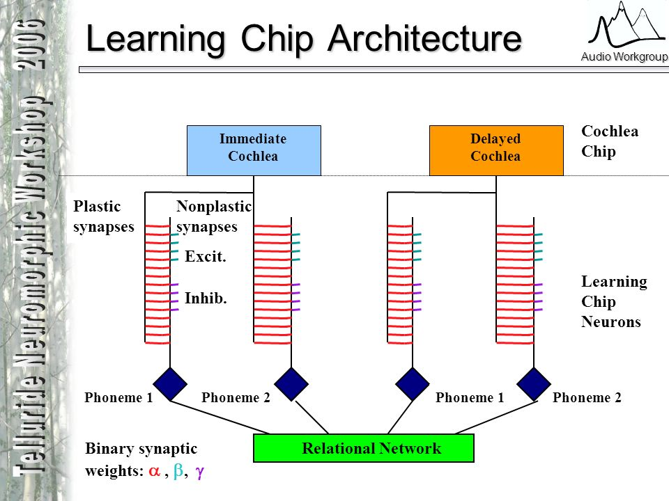 Audio Workgroup Phoneme 1Phoneme 2 Learning Chip Architecture Immediate Cochlea Plastic synapses Delayed Cochlea Phoneme 1 Cochlea Chip Learning Chip