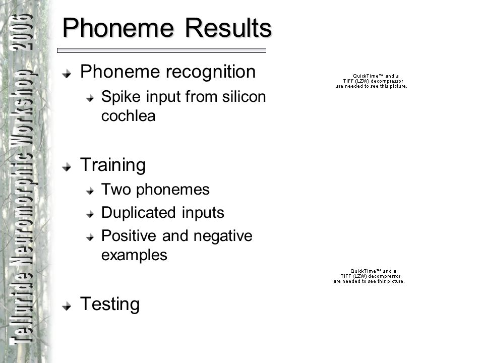Audio Workgroup Phoneme recognition Spike input from silicon cochlea Training Two phonemes Duplicated inputs Positive and negative examples Testing Ph