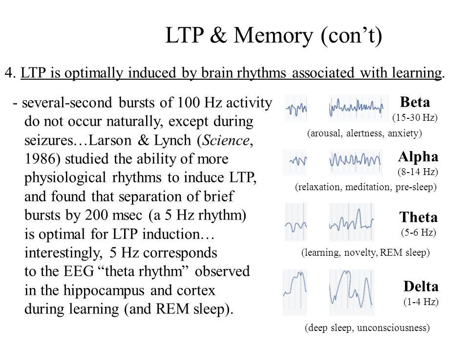 LTP & Memory (cont) 5.Drugs or genetic manipulations that block LTP also impair memory.