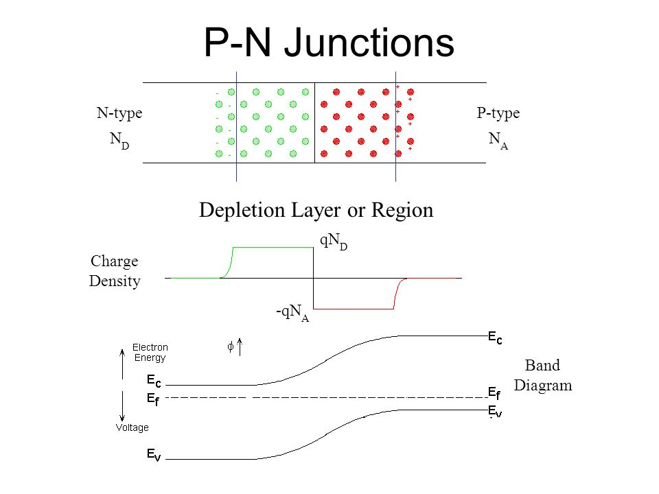 P-N Junctions N-type N D P-type N A Depletion Layer or Region Charge Density qN D -qN A Band Diagram