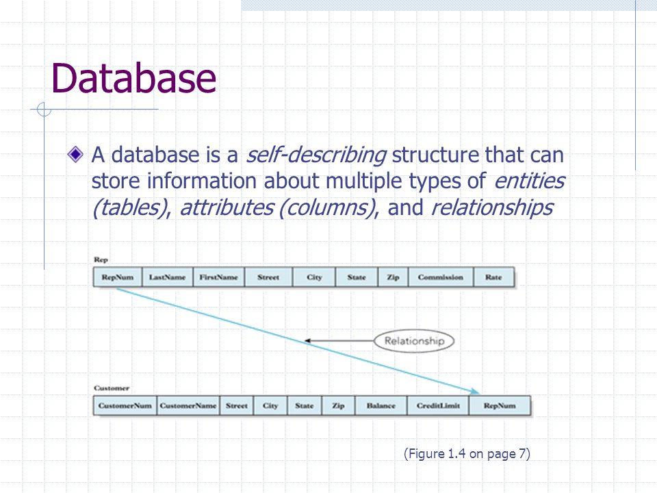 Database A database is a self-describing structure that can store information about multiple types of entities (tables), attributes (columns), and relationships (Figure 1.4 on page 7)
