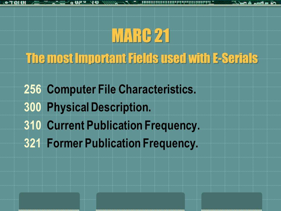 256 Computer File Characteristics. 300 Physical Description.