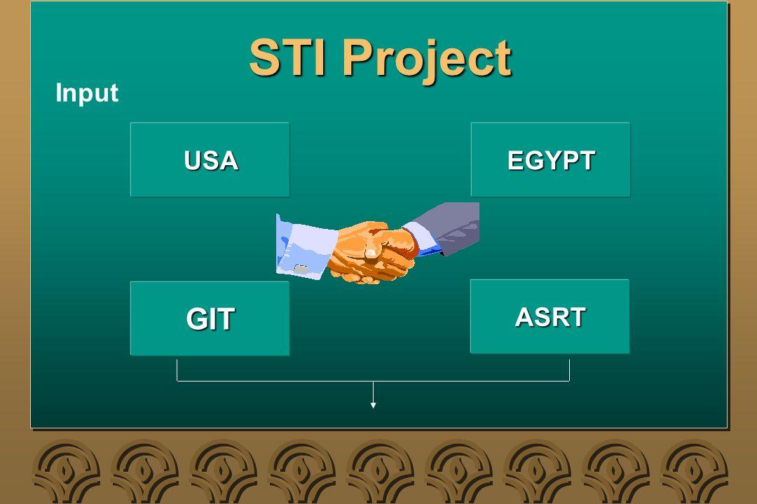 STI Project USAEGYPT GIT ASRT Input
