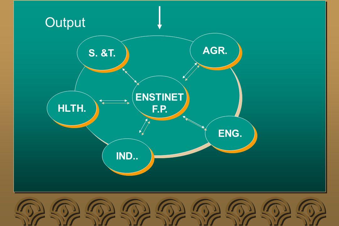 AGR. ENSTINET F.P. ENSTINET F.P. ENG. IND.. HLTH. S. &T. Output