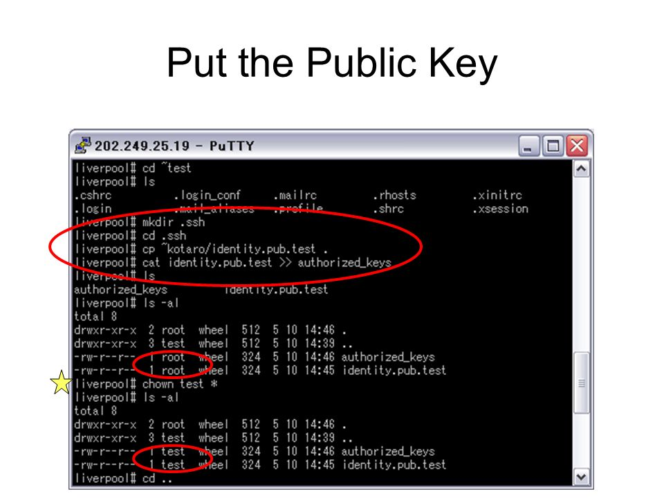 Put the Public Key