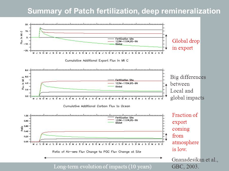 Summary of Patch fertilization, deep remineralization Big differences between Local and global impacts Long-term evolution of impacts (10 years) Global drop in export Fraction of export coming from atmosphere is low.