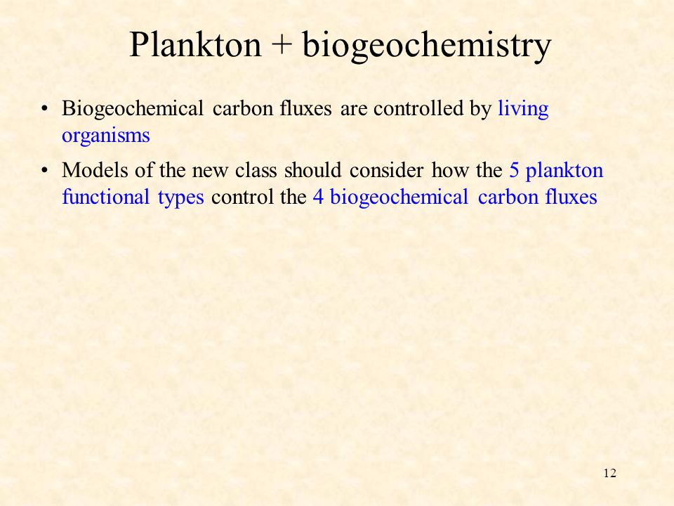 12 Plankton + biogeochemistry Models of the new class should consider how the 5 plankton functional types control the 4 biogeochemical carbon fluxes Biogeochemical carbon fluxes are controlled by living organisms