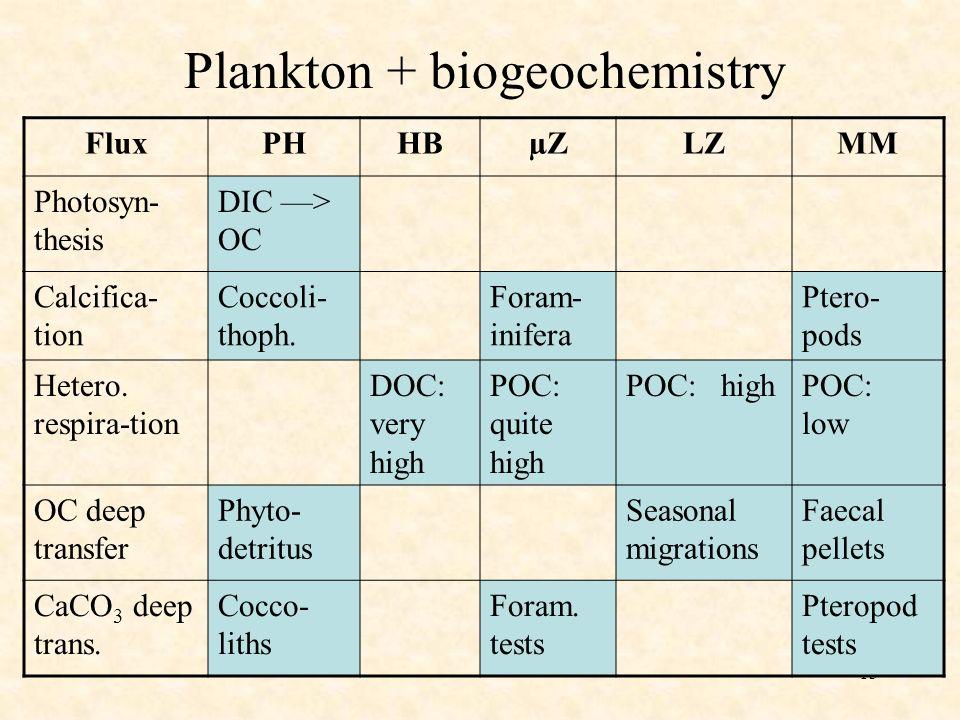 13 Plankton + biogeochemistry FluxPHHBµZLZMM Photosyn- thesis DIC > OC Calcifica- tion Coccoli- thoph. Foram- inifera Ptero- pods Hetero. respira-tion